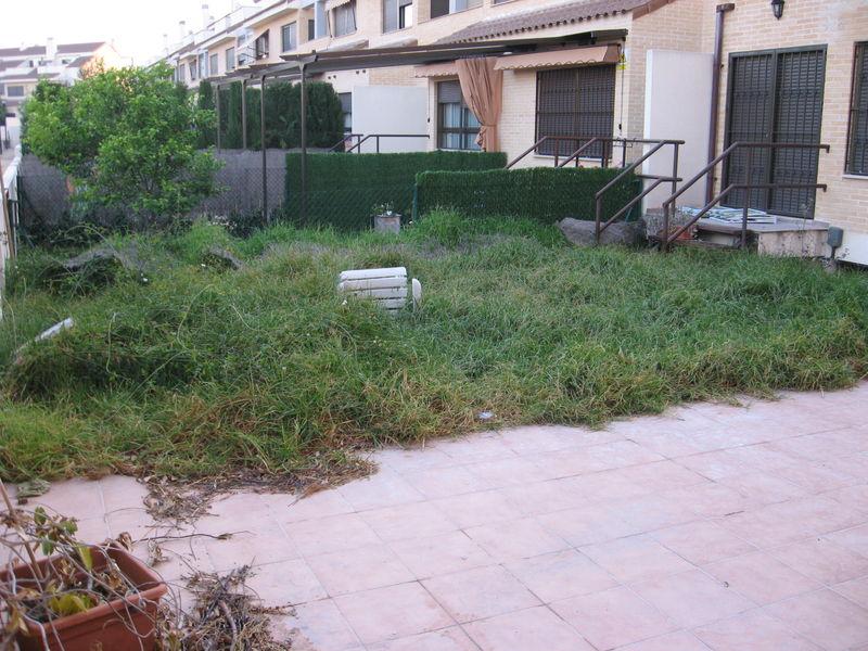 Profesionales Mantenimiento Limpieza De Jardines En